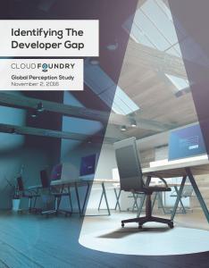 Developer Gap Report
