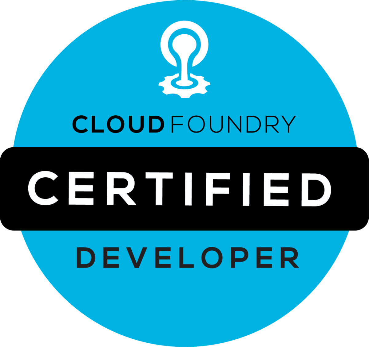 Cloud Foundry Certified Developer logo
