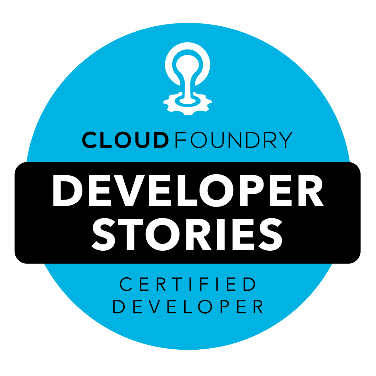 CFCD Developer Stories