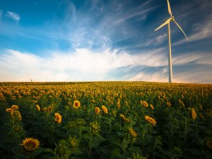 IoT and Cloud Foundry Amplify Kaiserwetter's Renewable Energy Data